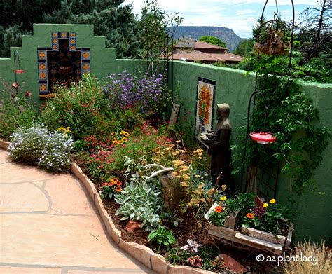 small space garden hummingbird paradise ramblings from a desert garden