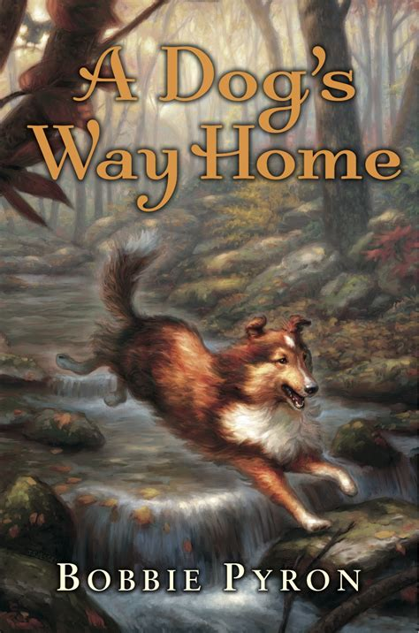 way home picture book our nine book giveaway winner and our second summer