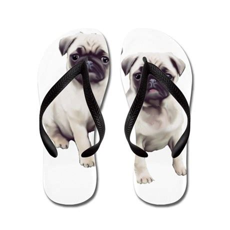 how to a pug to sit pugs sitting flip flops by dogdaze