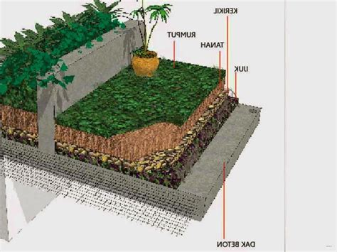 cara membuat desain atap rumah sensasi taman di atap rumah