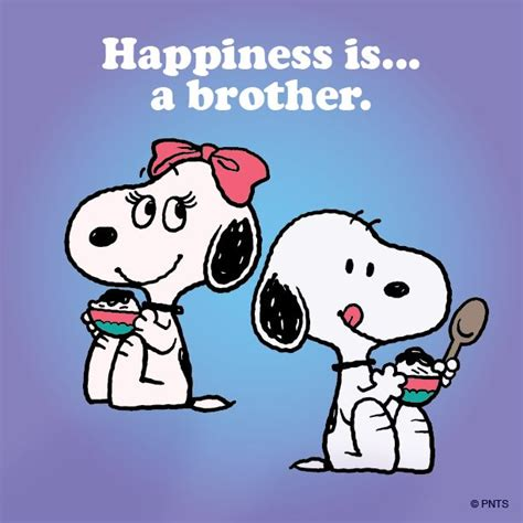 imagenes de i love you brother 872 best images about snoopy y amigos on pinterest
