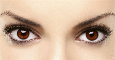imagenes ojos cafes image gallery ojos marrones