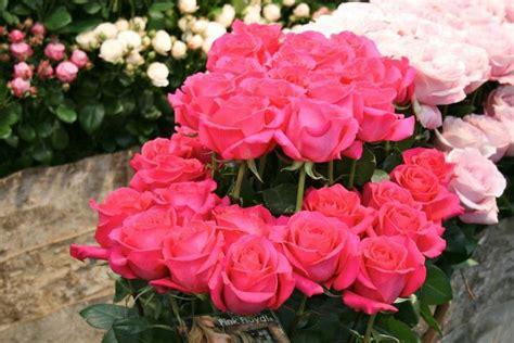 Kepala Bunga Mawar Artificial 50pcs toko bunga florist jakarta indonesia flower shop buket bunga mawar pink