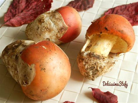 come cucinare gli ovoli zuppa di ovoli ricetta dolcissima stefy