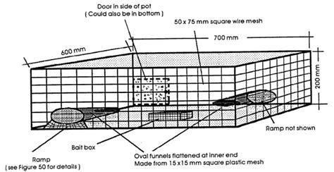 lobster trap diagram crab trap wire wiring diagram