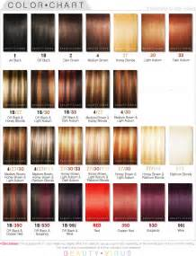 color chart for hair wonderful ion hair color chart with image of hair