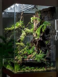 Glass Bulb Vase 25 Best Ideas About Fish Tank Terrarium On Pinterest