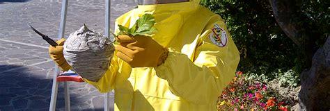 disinfestazione zecche giardino disinfestazioni il giardino re