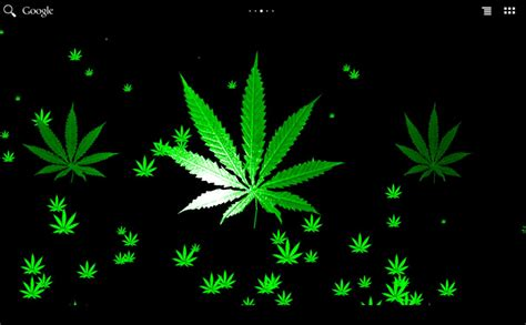 wallpaper for android weed 3d wallpaper weed leaf wallpapers hd wallpapers box