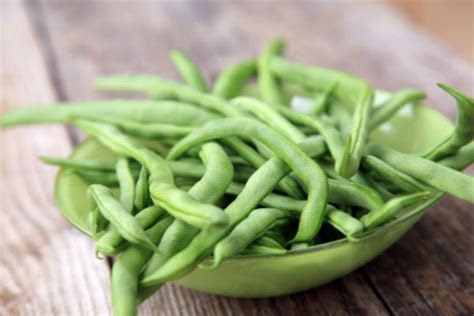 are green beans for dogs can dogs green beans american kennel club