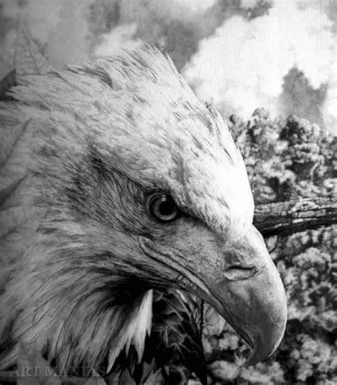imagenes no realistas wikipedia dibujos de animales totalmente realistas arte taringa