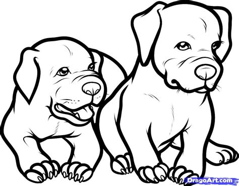 coloring pages of pitbull dogs only pitbull dogs coloring pages how to draw baby