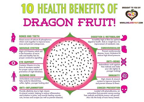 7 Uses For Fruit by Best 25 Fruit Benefits Ideas On Toxin Cleanse