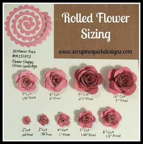 rolled paper flower pattern 27 images of cricut succulent rolled flower template