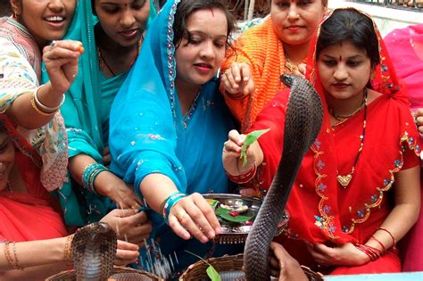 nag panchami 2017 why snakes are worshipped in india
