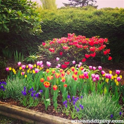 Flower Garden Design Ideas Flower Garden Design