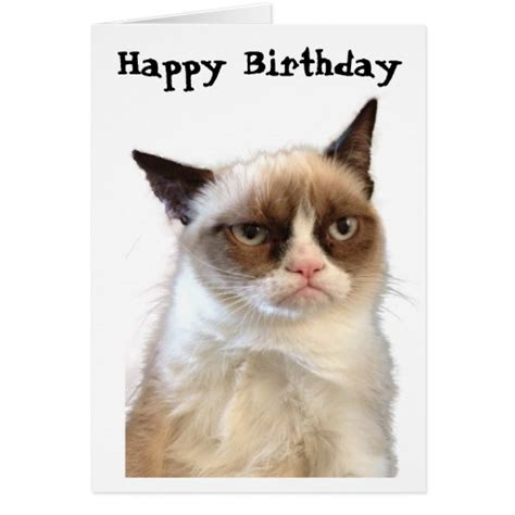 Happy Birthday Cat Card Grumpy Cat Happy Birthday Card Zazzle