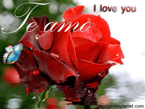 imagenes de rosas para enamorar im 225 genes de rosas para enamorar imagenes de amor gratis