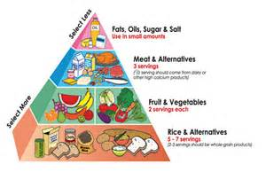 healthy food pyramid food and nutrition