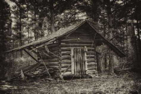 log cabin   woods cabinslog homes log cabin living cabins   woods cabin homes