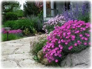 Rock Garden Plants Along The Way How To Build A Rock Garden