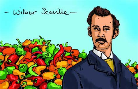 wilbur scoville pharmacist who tested chilli pungency