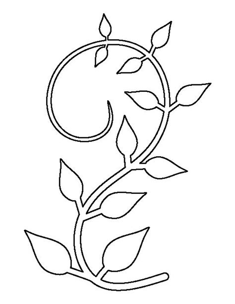 drawn vine outline pencil and in color drawn vine outline