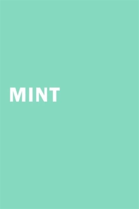 25 best ideas about mint color on mint mint color palettes and mint color schemes