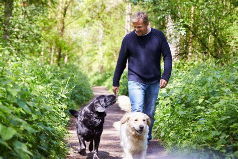 companion breeds best companion breeds canna pet 174