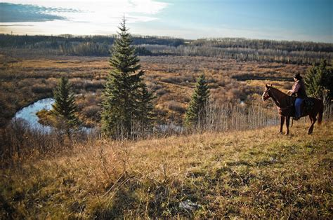 horseback riding in prince albert national park with