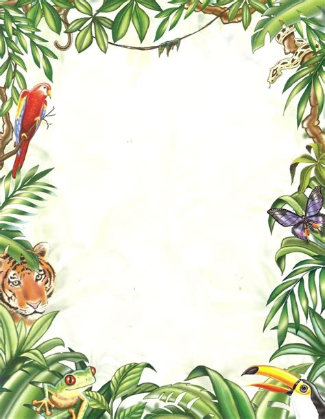 lined paper with rainforest border letter paper rain forest paper direct doreens briefpapierwelt