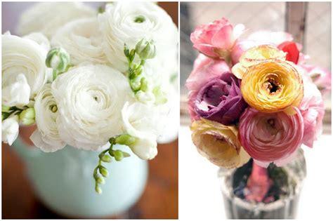 ranuncoli fiori appunti di una damigella creativa le stagioni dei fiori