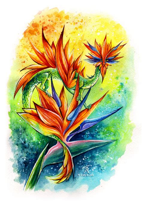 bird of paradise tattoo designs bird of paradise by trollgirl on deviantart