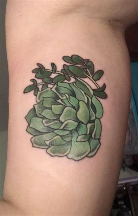 wildside tattoo the 25 best ideas about succulent on