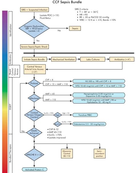 sepsis flowchart trick of the trade serial lactate measurements in sepsis