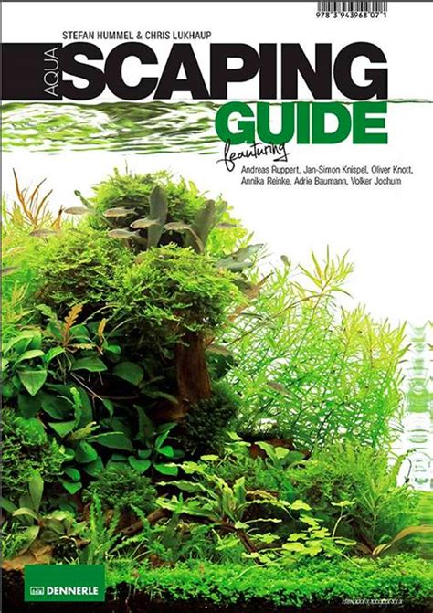 aquascaping guide aquascaping guide 28 images wood for aquascaping 28