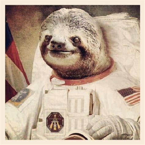 Astronaut Sloth Meme - astronaut sloth pics about space