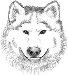 coloring pages wolves printable galleryhip hippest galleries