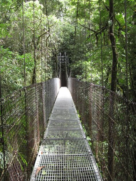 Hanging Photos On Wire file arenal hanging bridges costa rica jpg wikimedia