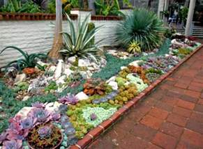 designing a succulent garden related keywords amp suggestions designing a succulent garden long