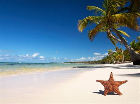 tropical beach tourism images  hd wallpapers