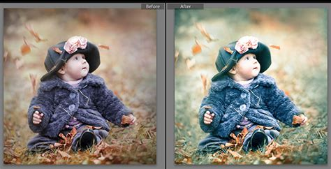 Light Room Presets by 230 Free Lightroom Presets You Will