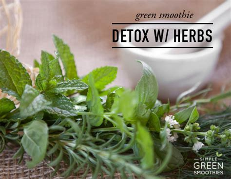 Detoxing With Herbs by Detox Your Green Smoothies With Herbs Simple Green Smoothies