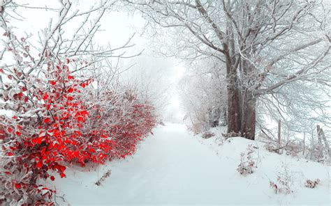 great xmas snow wallpaper pics beautiful snow wallpapers 183