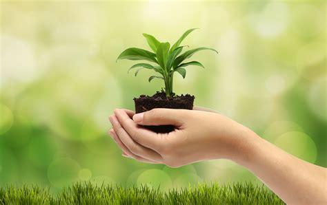 imagenes educativas sobre medio ambiente image gallery medio ambiente
