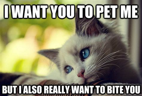 Bite Me Meme - i want you to pet me but i also really want to bite you