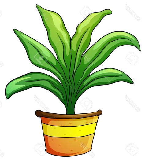 unique plant pots unique of plant pot on clipart no photos