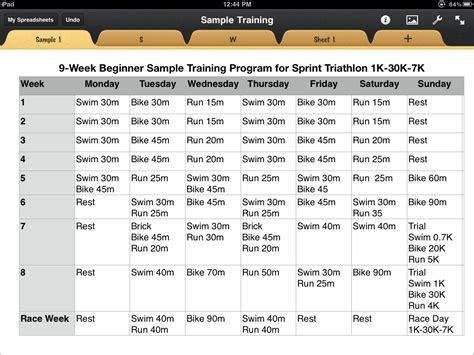 triathlon template triathlon sle plan