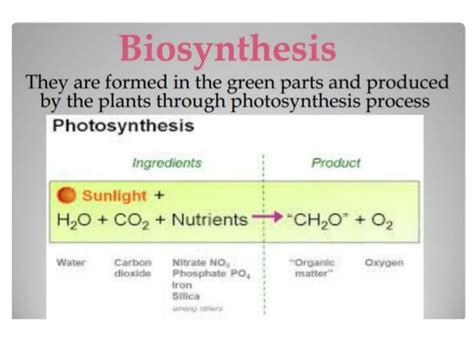 5 carbohydrates are composed of which three elements carbohydrates