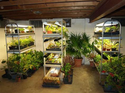 indoor garden setup pin by savage on gardening ideas